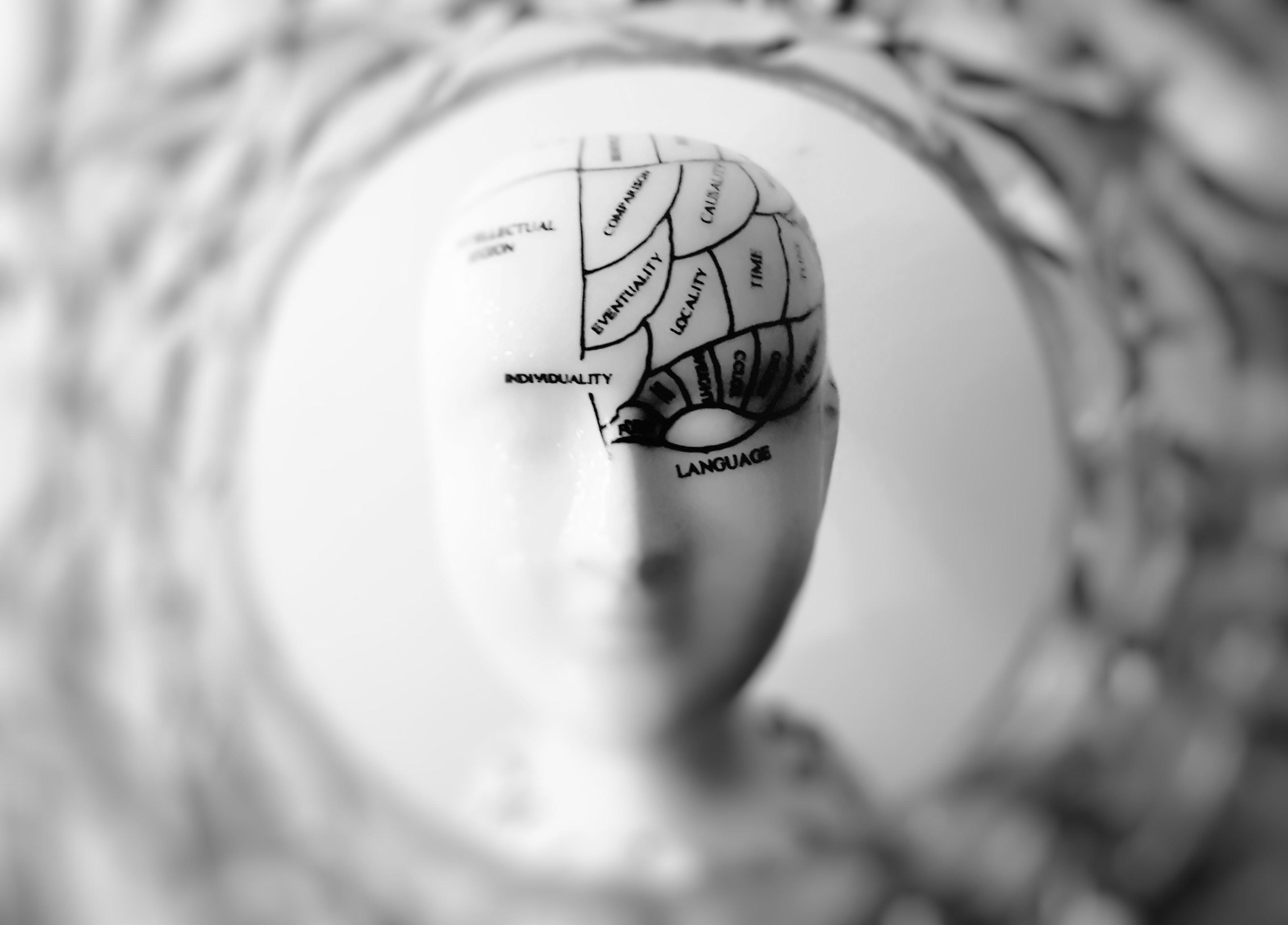 Breinwerking bij verandering